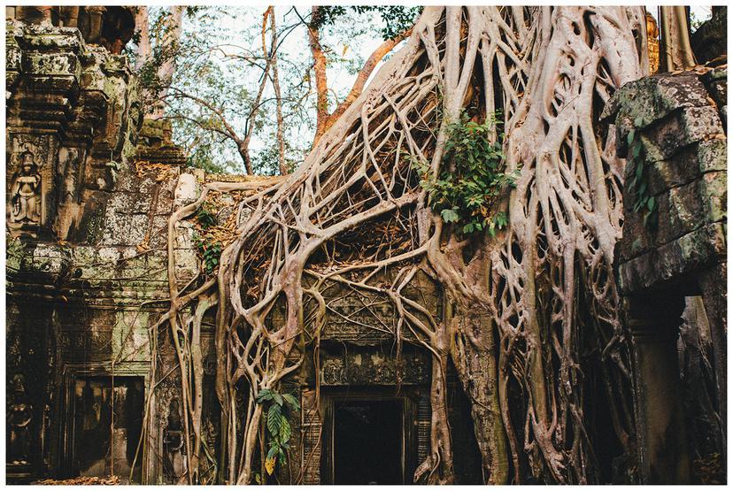 Cambodia |Travel Photography