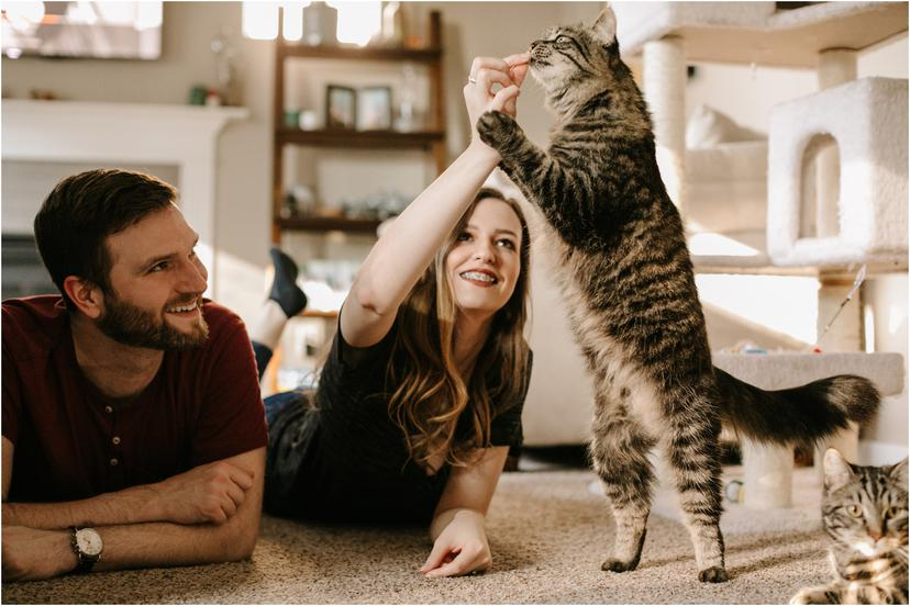In home Corvallis Engagement Photos with cats